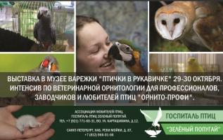 """Приглашаем на интенсив """"Орнито-профи"""" 29 и 30 октября в Санкт-Петербурге!"""