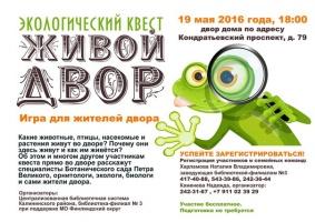 Эко-квест в Санкт-Петербурге, расскажем про городских птиц!